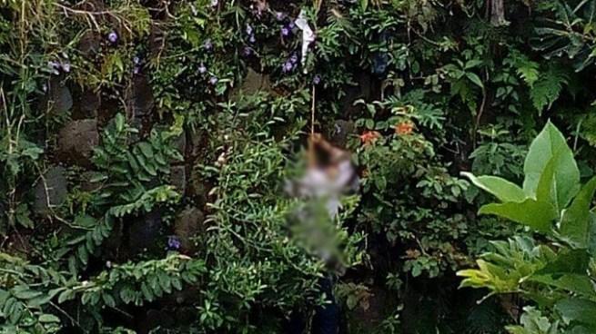 Hombre se ahorca en un puente en el Barrio San Jacinto en San Salvador