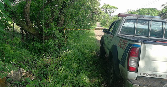 Pandilleros asesinaron a un agricultor cuando cortaba mangos en Chapeltique, San Miguel