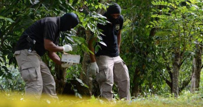 Tres hombres fueron asesinados en diferentes zonas del occidente del país y La Paz