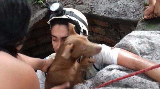 Socorristas de la Cruz Verde rescataron a un perro que cayó dentro de un pozo