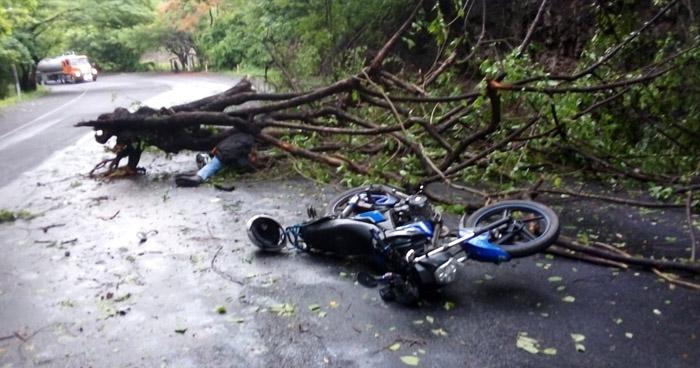 Motociclista pierde la vida al chocar contra árbol caído en Tamanique, La Libertad