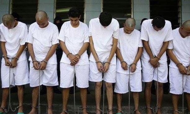 Envían a prisión a 26 pandilleros de la MS por 5 casos de homicidio en La Libertad