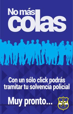 solvencia-pnc-linea