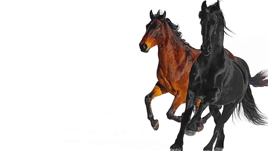 old town road download