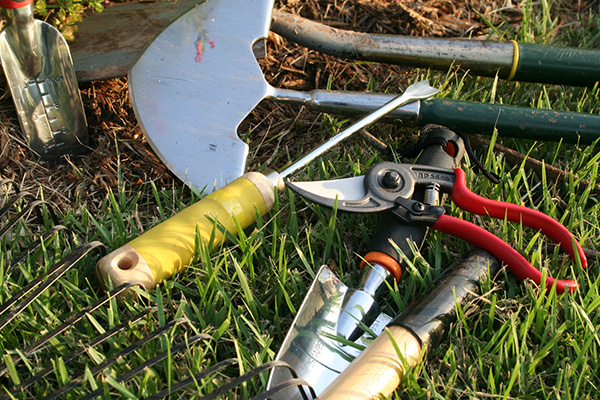 tools and marketing tips for gardeners