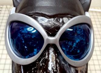 catoman goggles (22)