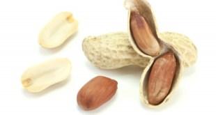 La alergia a los cacahuetes y su posible solución