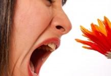 por que estornudamos