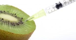 grasas trans alimentos transgenicos