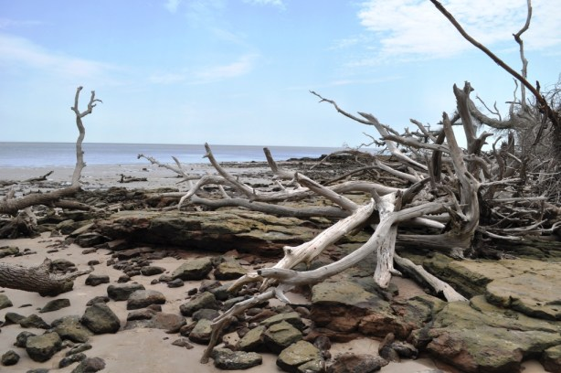 Blackrock Beach - Big Talbot Island State Park, Florida
