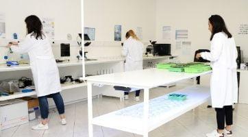 laboratório gerador de ozono algarve europa lab ozone generator algarve europe