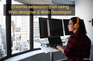 Chrome Developer Extension You should install
