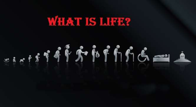 What is Life? Best Motivational Story