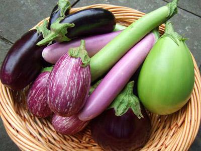 Varietà e caratteristiche delle melanzane