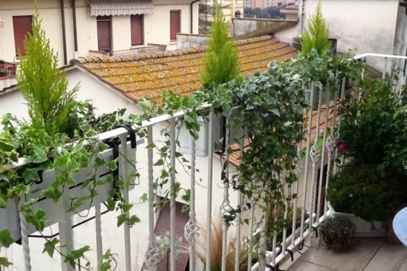 Come preparare il terrazzo per nuove fioriture