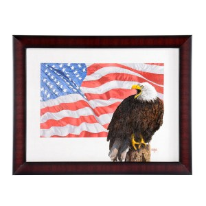 Barron Postmus Bald Eagle & Flag
