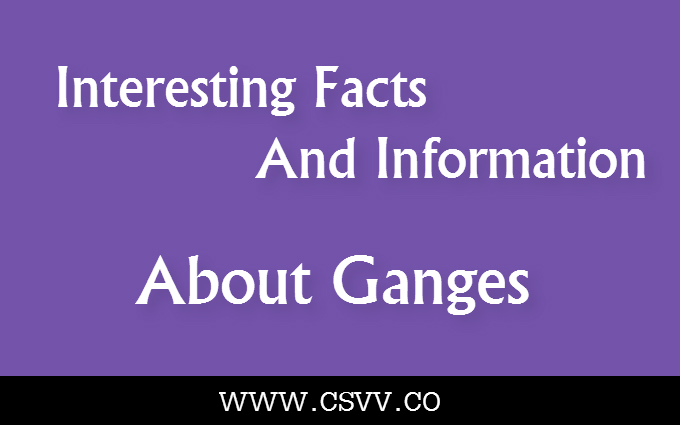 Interesting Facts and Information about Ganges