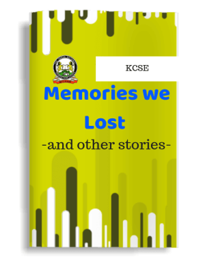 Memories we Lost and Other Stories Guide Notes excerpts questions