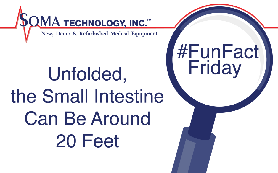 The length of the small intestine - Soma Technology, Inc.