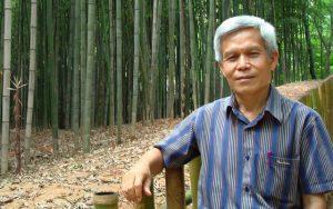 Sombath-bamboo-02