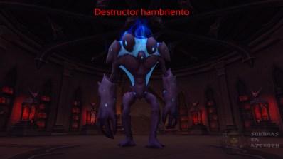 CastilloNathriaZona07