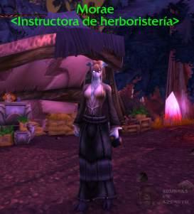 GuiaHerboristeriaTBCClassic07