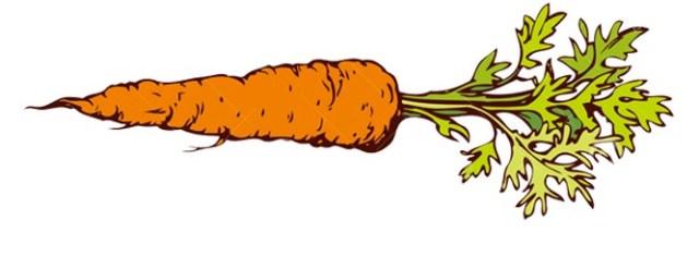 jolie-carotte