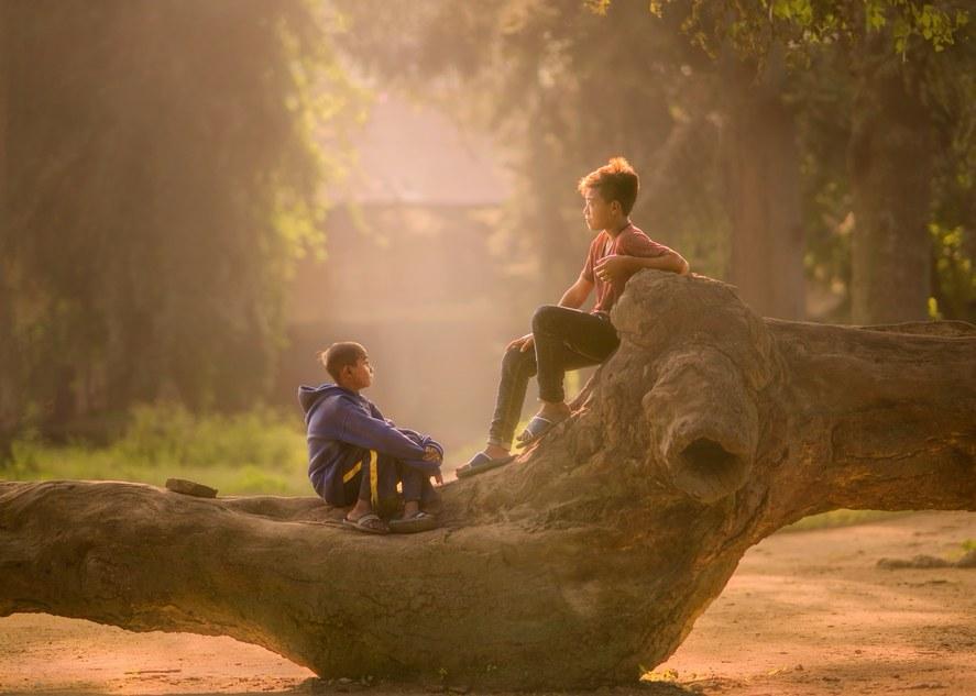 Friends in tree