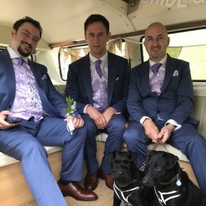 Somerset Wedding Campervans dogs