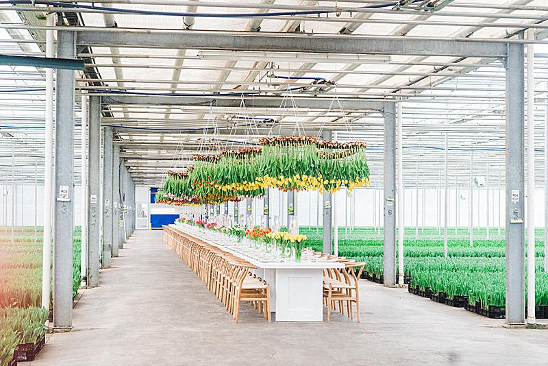 Bloomia x American Grown Field to Vase Dinner Tour || King George, VA