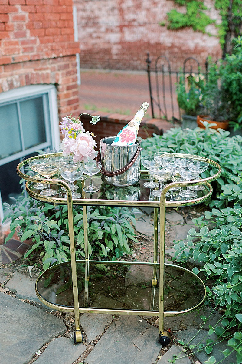 backyard_home_weddings_dc_0435.jpg