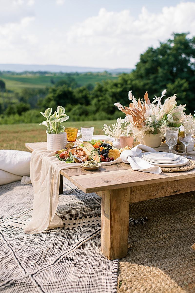 vineyard_wedding_rentals_virginia_0489.jpg