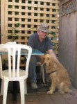 Golden Retriever at Gecko's outdoor seating