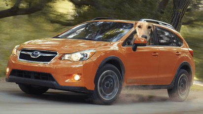 Honey the Golden Retriever rides in a Subaru CrossTrek.