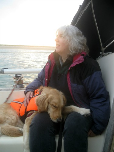 Honey the Golden Retriever is dog tired of sailing.