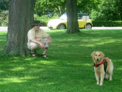 Honey the golden Retriever stands in the park with Mike.