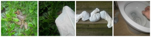 Getting rid of dog poop with Flush Doggy flushable dog waste bags.