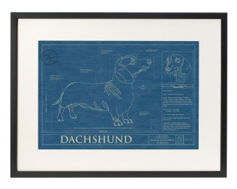 Dog blueprint from Uncommon Goods.
