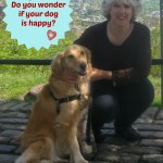 Do You Wonder If Your Dog Is Happy?