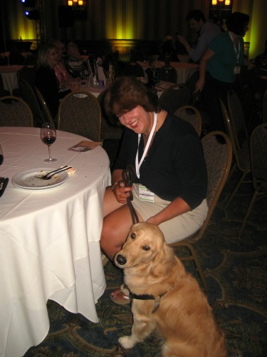 Honey the golden retriever at BlogPaws.