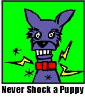 Never Shock a Puppy graphic.