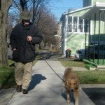 Do You Need To Walk Your Dog Every Day? Take The Quiz.