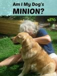 Are you a dog's minion?