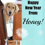 A Happy New Year Story