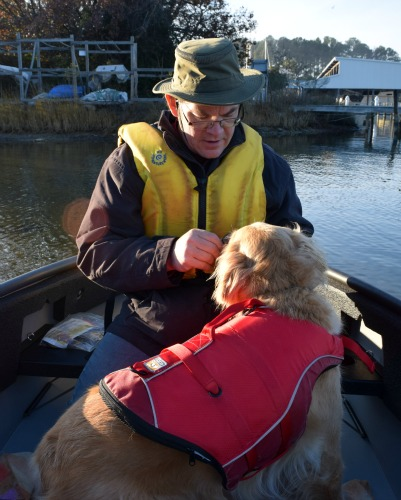 Honey the golden retriever gets treats in the dinghy.