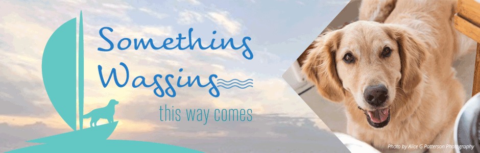 Something Wagging This Way Comes - Life Lessons and More From a Boat Dog