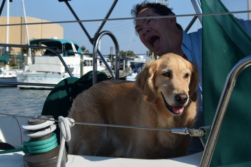Honey the golden retriever in the cockpit with goofy Mike.