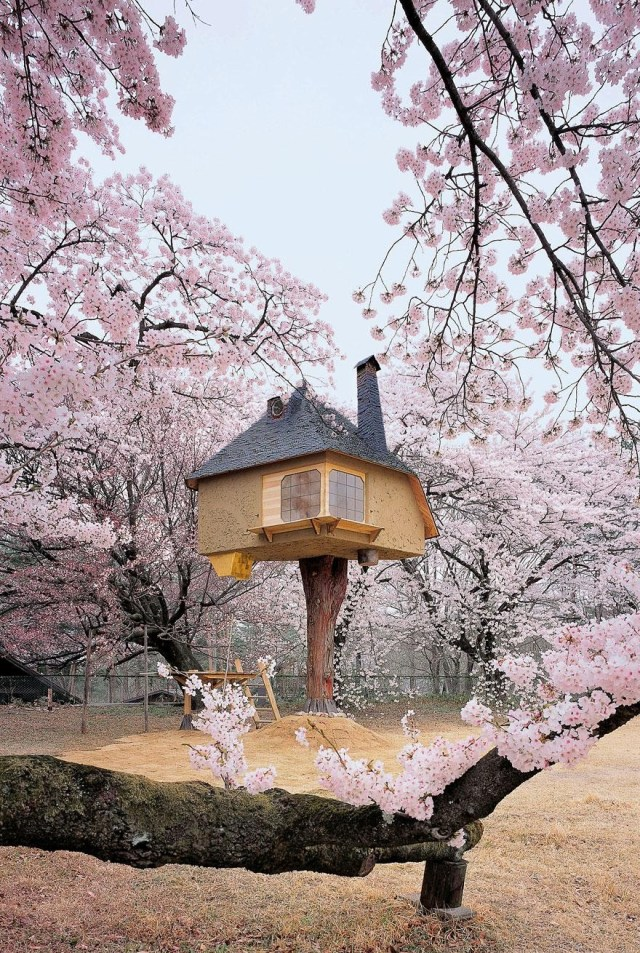 Whimsical-Treehouse-16