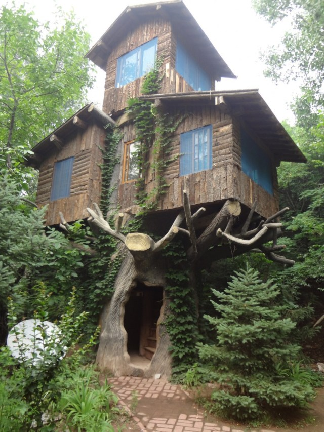 Whimsical-Treehouse-25