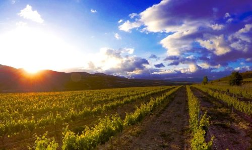 What is the Rioja Wine Region Known For? | Sommelier Q&A with Matt Deller, Master of Wine | SommerlierQA.com